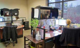 7 wastes in the office